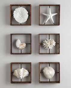 Faux Coral Shadowboxes at Horchow.