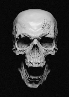 Vampire skull... This is what they are suppose to look like. They are not suppose to look like teenagers who sparkle!!!!!