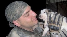 Fallen soldier's rescue dog saved from Iraq rescued from house fire (VIDEO) » DogHeirs | Where Dogs Are Family « Keywords: rescue dog, Iraq
