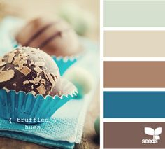 Brown & turquoise