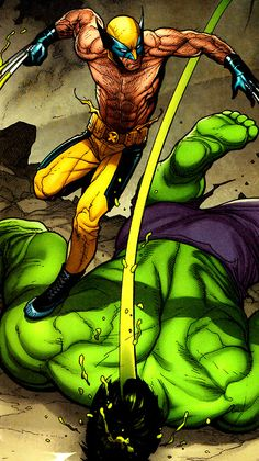 Wolverine vs Hulk
