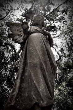 Angel in graveyard in Amelia Island, FL