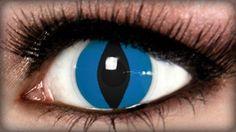 Aqua Cat Contact Lenses on ExtremeSFX.com
