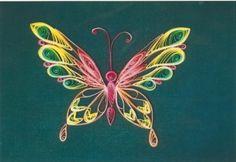Butterfly, fancy