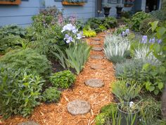 Keep the path simple. Shredded mulch is less maintenance.