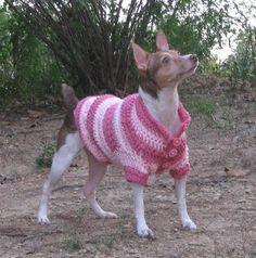 Free Crochet Dog Coat Pattern | Dog In A Sweater: Doggy Fashion Show