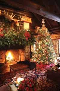 Christmas at the cabin. #holiday #acorn