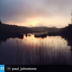 @paul_johnstone's latest @instagram photo for @exploreminnesota is this beautiful shot from Pillsbury State Forest just west of #Brainerd, Minnesota. #Minnesota #summer #lake #sun #OnlyinMN