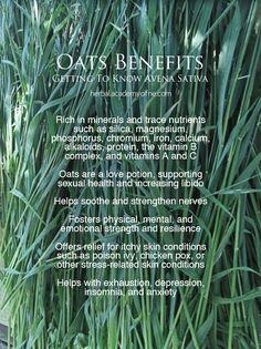 Health benefits of oats <3