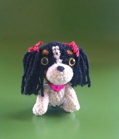 Cavalier Spaniel Ami Dog