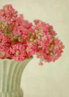 #color #flower #flora