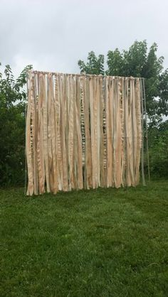 Fabric backdrop for outdoor wedding ceremony ... I really like this! Could work in tree too