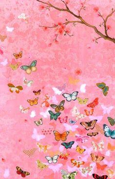 Chris Chun - butterflies  beautiful