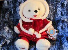 "20"" 2010 Retired Earthrite Fiber Snowflake Teddy Bear Dan Dee Christmas Female"