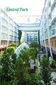 Stroll through Central Park on Oasis of the Seas.