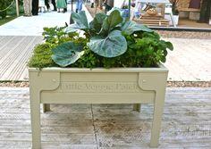 garden vegetables garden garden kitchen veget garden garden planter