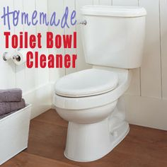 Homemade Toilet Bowl Cleaner & All Purpose Cleaning SprayOne Good Thing by Jillee   One Good Thing by Jillee