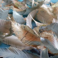 Paper feathers. Awesome.