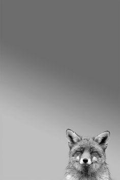 fox smile.