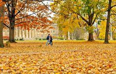 Fall at PSU