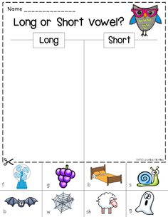 Common Core Crunch - October ELA Printables for centers, assessment, word work, morning work, homework, opinion writing, how to writing (vowels, digraphs, syllables, abc order)