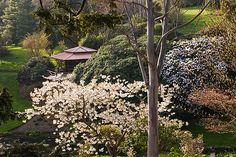 Tea Pagoda at Tregothnan by Clive Nichols