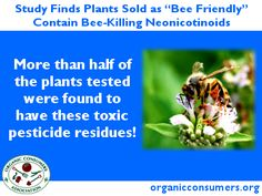 """The pilot study, co-authored by the Pesticide Research Institute, found that 7 of 13 samples of garden plants purchased at top retailers in Washington D.C., the San Francisco Bay Area and Minneapolis contain neurotoxic pesticides known as neonicotinoids that studies show could harm or kill bees and other pollinators."""