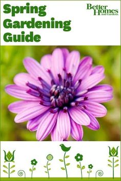 Happy first day of Spring! We've created a Spring Gardening Guide to celebrate. Follow this link to get yours: http://bit.ly/GCkoPL