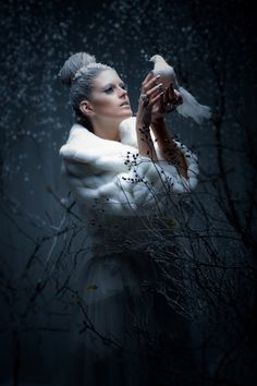 The Snow Queen ~*
