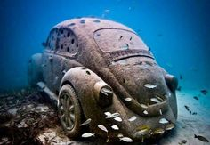 VW under water with fish