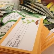 The seed library is a partnership between the Basalt Public Library and the Central Rocky Mountain Permaculture Institute. Seed packets encourage gardeners to write their names and take credit for their harvested seeds.