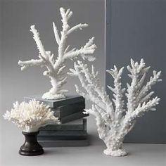White Coral Decor