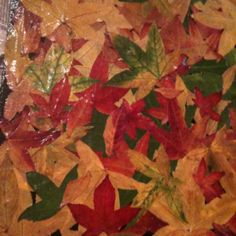 Fall leaves modge podged to heavy poster board. I am planning on framing this to hang in my house. Find leaves, press them in between books and then modge podge. I did several coats.