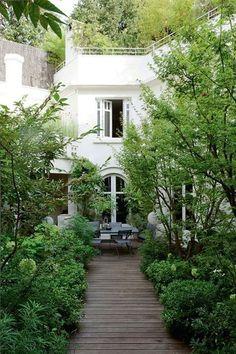 Hidden garden in Paris, hydrangea, sarcococca, pittosporum...
