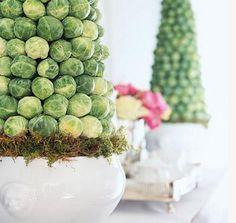 Make these Brussels sprout topiaries Tutorial.  AND 45 OF THE BEST FRENCH INSPIRED CRAFT TUTORIALS EVER with their links! GIFTS, HOUSE, EVENT, WEDDINGS, DECOR, FLOWERS, COOKIES.  From MrsPollyRogers.com centerpiec, sprout topiari, brussels sprouts, brussel sprout, party crafts, craft tutorials, parti