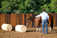 Downunder Horsemanship | Training Tip of the Week: Timing is critical when getting your horse to go over an obstacle