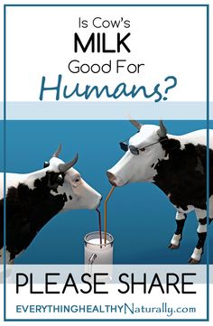 Is Cow's Milk Good for Humans?