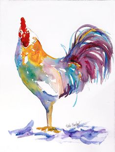 Water color rooster.