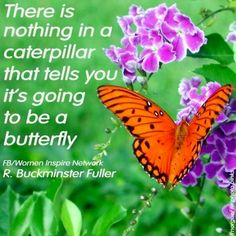 Butterfly quote via www.facebook.com/WomenInspireNetwork