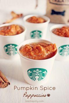 Pumpkin Spice Puppuccinos