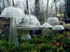 Glass Mushrooms
