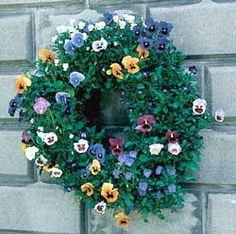Living Wreath Forms - SMALL 16 LIVING WREATH FORM WITH JUTE LINER