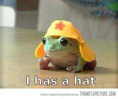Tiny hat…