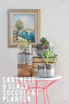 Concrete and Glass Succulent Planter Tutorial - Vintage Revivals