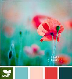 field, color palettes, design seeds, color schemes, color combos, room colors, red nails, wedding colors, poppi