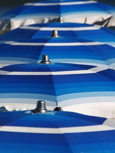Blue parasols, Alassio, Italy