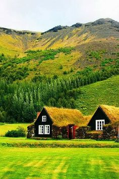 Rural Iceland! cottag, beauti place, dream, natur, hous, rural iceland, travel, grass roof, destin