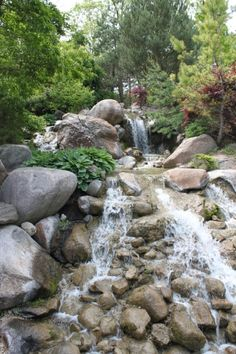 Arboretums botanical gardens and more on pinterest - Dubuque arboretum and botanical gardens ...