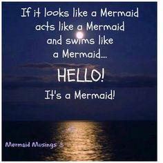 Dreaming of Mermaids....