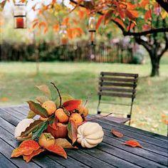 13 easy pumpkin arrangements | Garden harvest | Sunset.com
